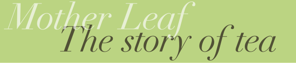 Mother Leaf The story of tea